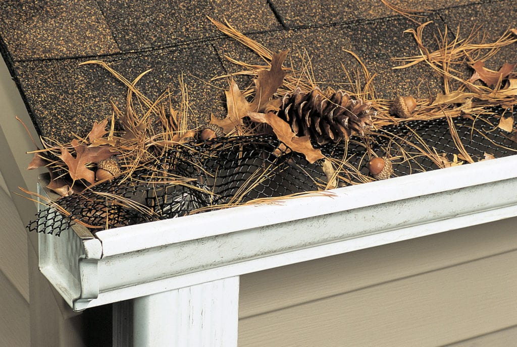 Gutter clogged with debris
